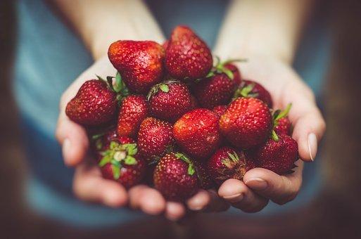 Jak sadzić truskawki?